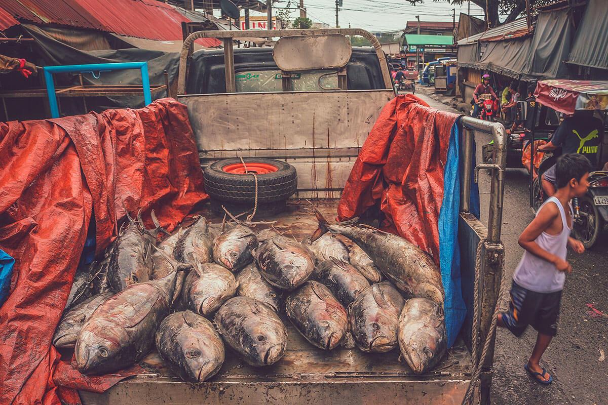 フィリピンのクレジットカード事情