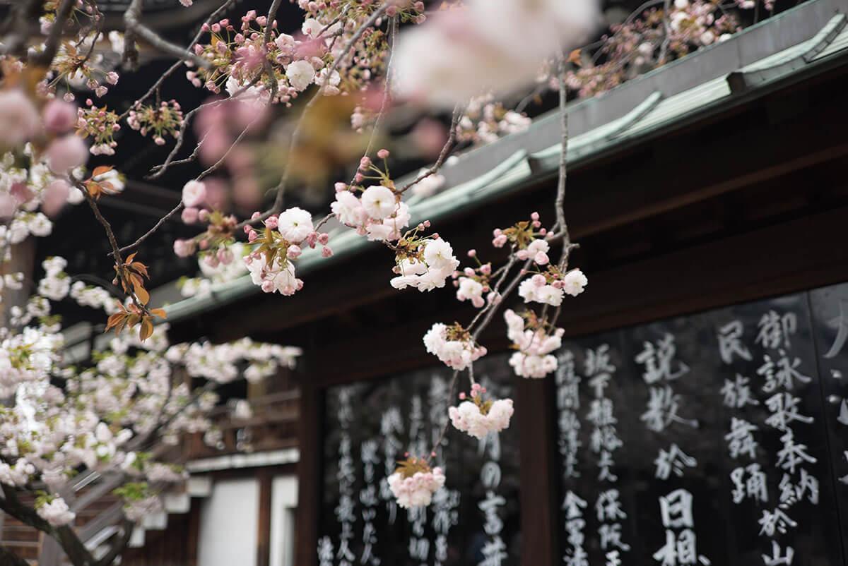 海外で日本語で仕事をする方法